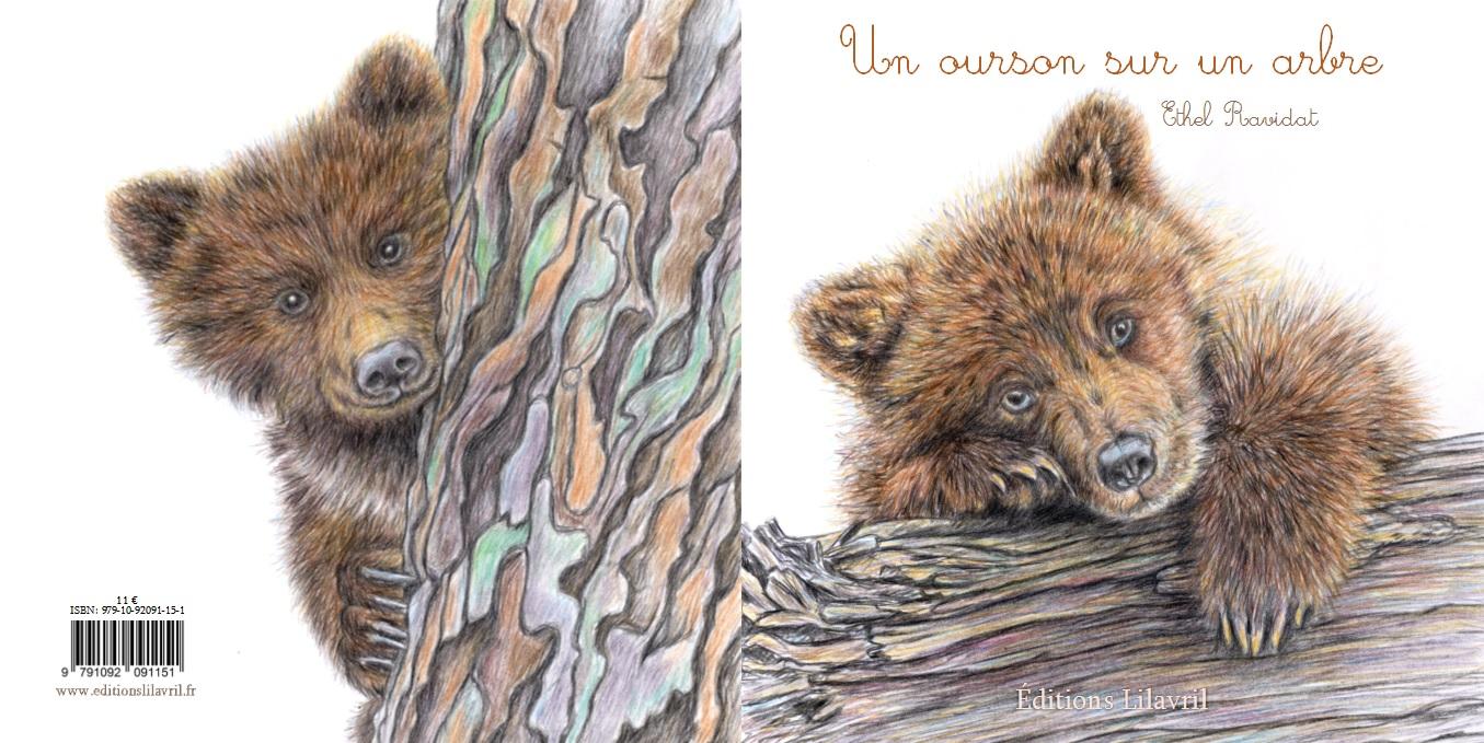 Couv image ourson sur un arbre 1