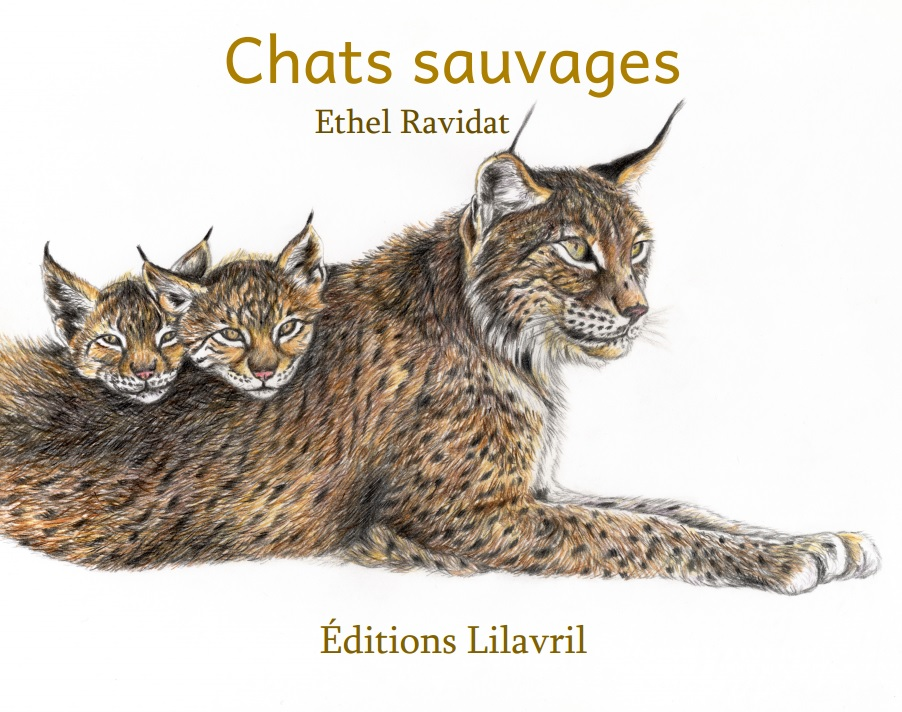 Image couv chats sauvages