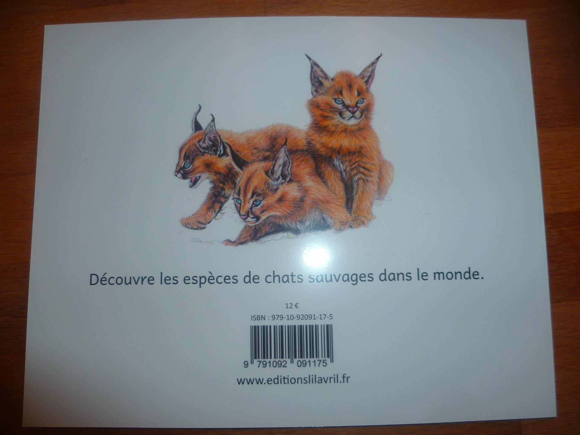 Chats sauvages